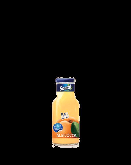 Apricot Juice Albicocca Santal 24x25cl