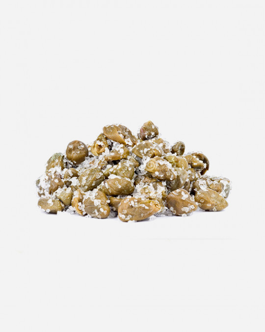 Capers in Salt 1kg
